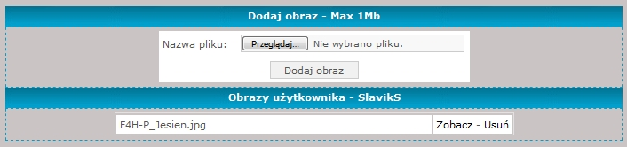 rcplock.pl/slaviks/Wst_obrazow_2.jpg